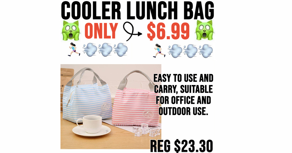 Cooler Lunch Bag Only $6.99 Shipped on Amazon (Regularly $23.30)