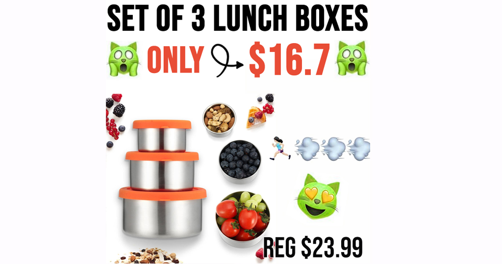 Set of 3 Lunch Boxes Only $16.79 Shipped on Amazon (Regularly $23.99)