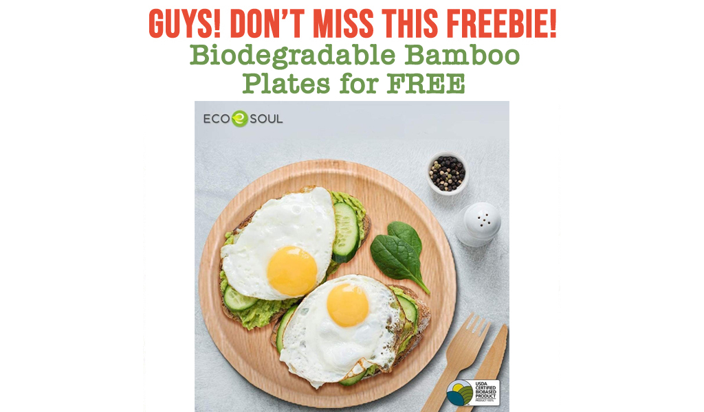 Biodegradable Bamboo Plates for FREE