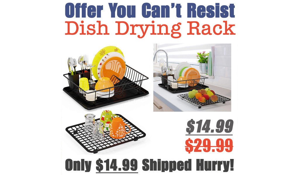 Dish Drying Rack Only $14.99 Shipped on Amazon (Regularly $29.99)