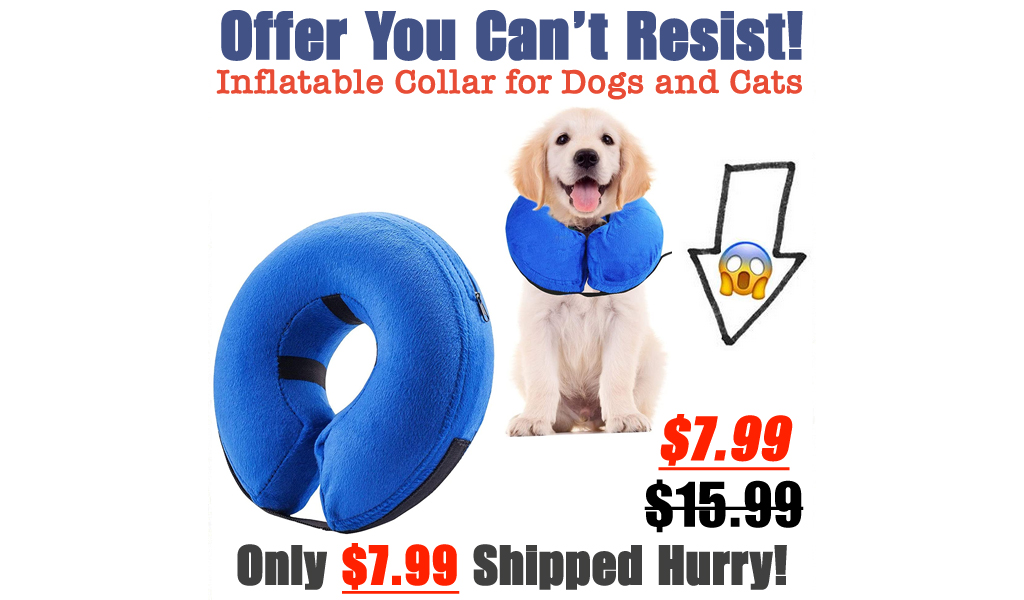 Inflatable Collar for Dogs and Cats Only $7.99 Shipped on Amazon (Regularly $15.99)
