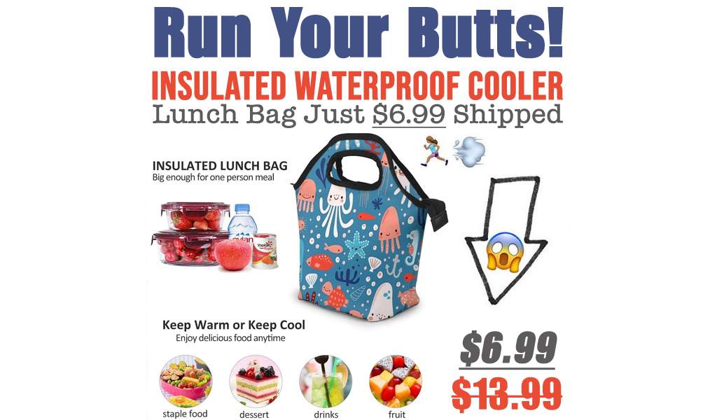 Insulated Waterproof Cooler Lunch Bag Just $6.99 Shipped on Amazon (Regularly $13.99)