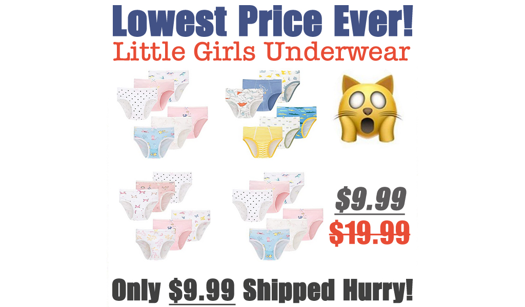 Little Girls Underwear Just $13.39 Shipped on Amazon (Regularly $19.99)
