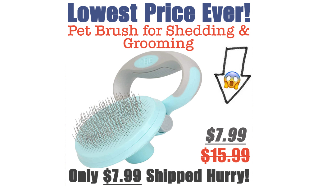 Pet Brush for Shedding & Grooming Only $7.99 Shipped on Amazon (Regularly $15.99)