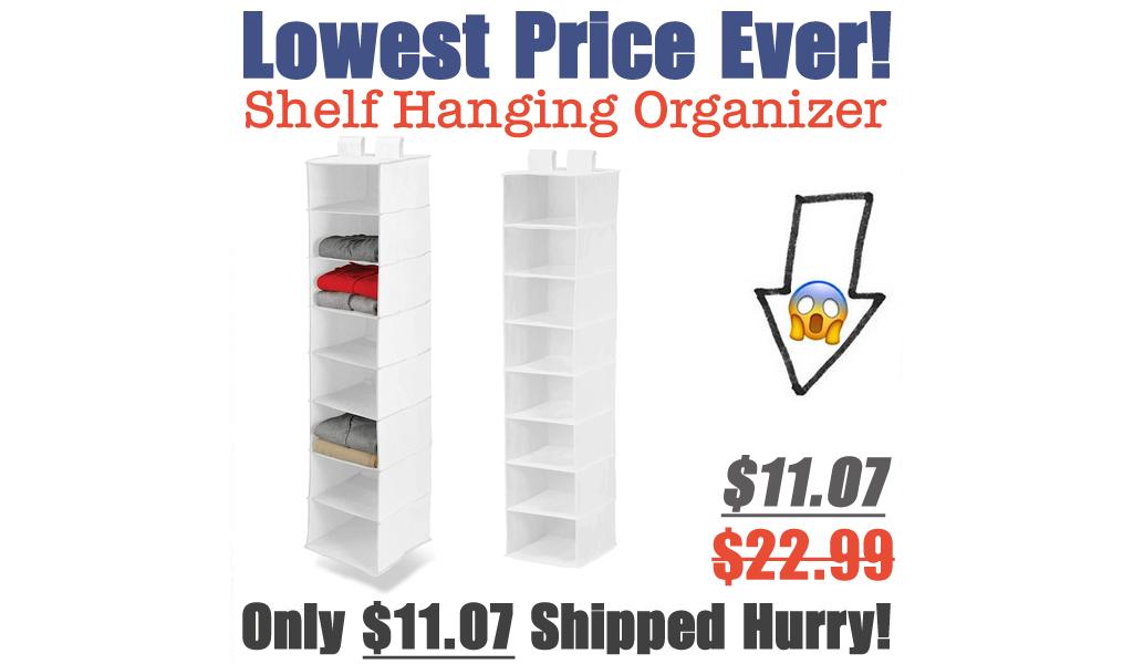 Shelf Hanging Organizer Only $11.07 Shipped on Amazon (Regularly $22.99)