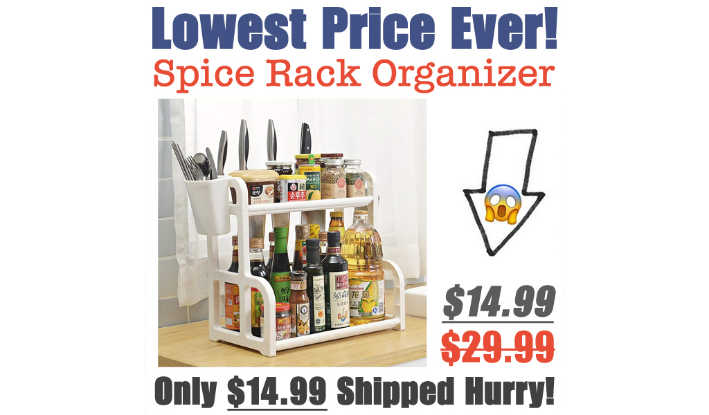 Spice Rack Organizer Only $14.99 Shipped (Regularly $29.99)