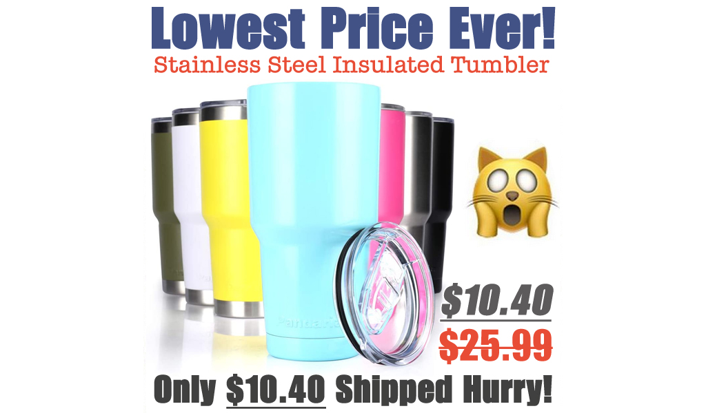 Stainless Steel Vacuum Insulated Tumbler Just $10.40 Shipped on Amazon (Regularly $25.99)