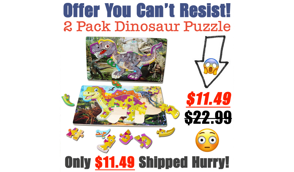 2 Pack Dinosaur Puzzle Only $11.99 Shipped on Amazon (Regularly $22.99)