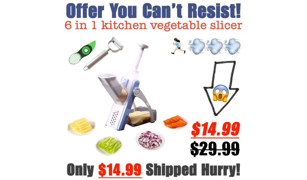 6 in 1 kitchen vegetable slicer Only $14.99 Shipped on Amazon (Regularly $29.99)