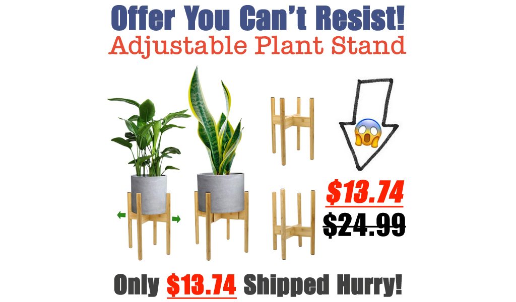 Adjustable Plant Stand Only $13.74 Shipped on Amazon (Regularly $24.99)
