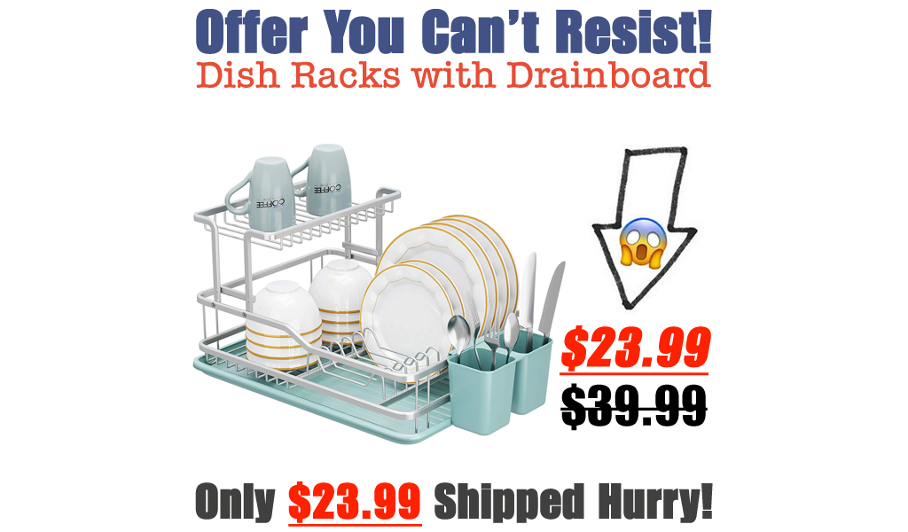 Dish Racks with Drainboard Only $23.99 Shipped on Amazon (Regularly $39.99)