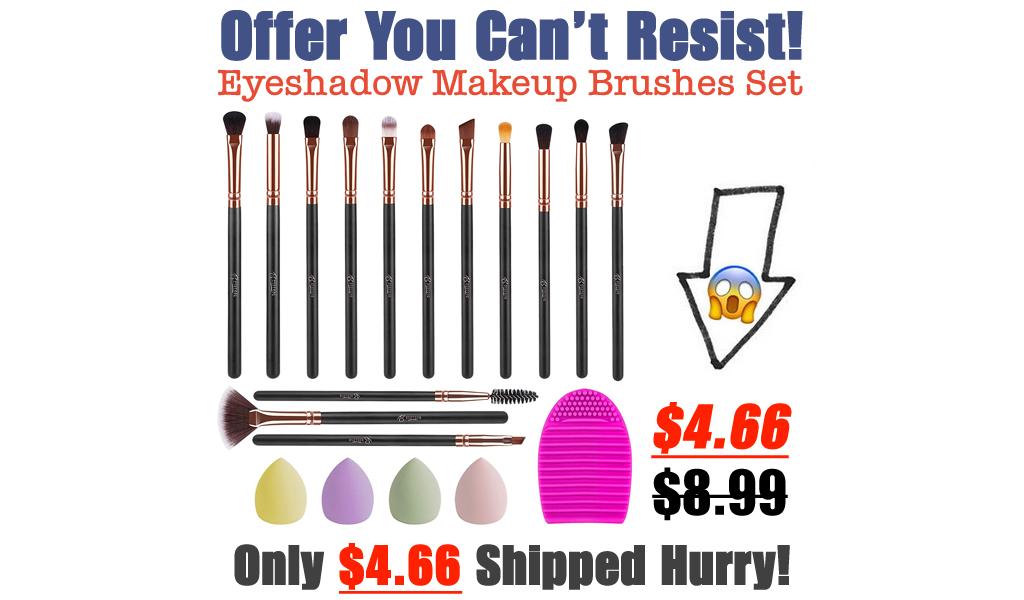 Eyeshadow Makeup Brushes Set - 14 PCS Only $4.66 Shipped on Amazon (Regularly $8.99)
