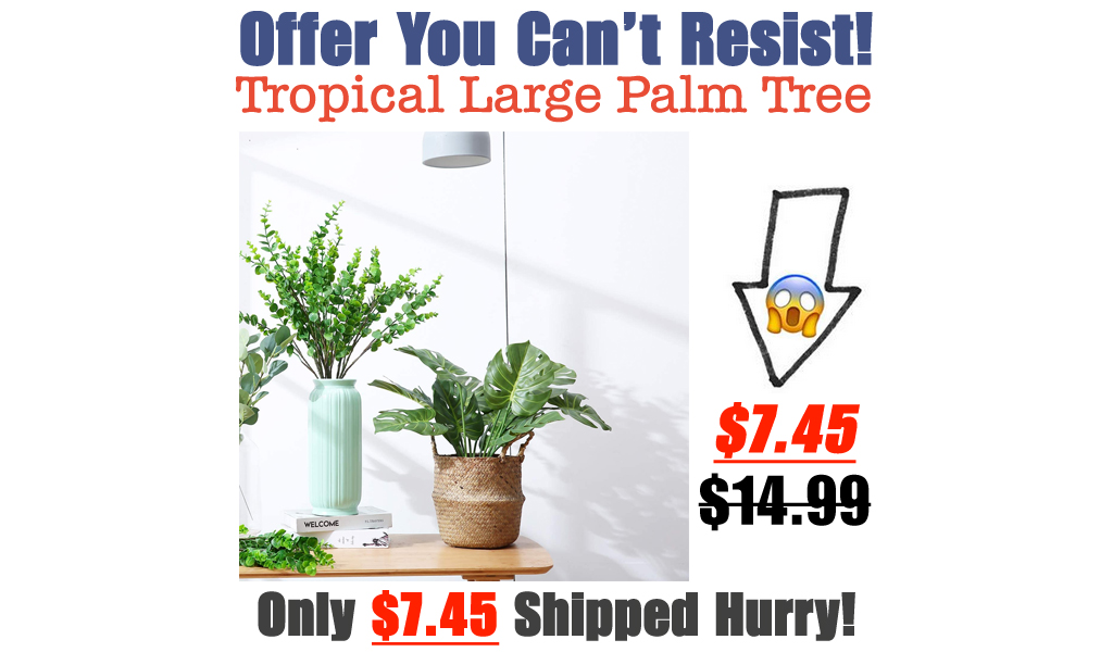 Tropical Large Palm Tree Only $7.45 Shipped on Amazon (Regularly $14.99)