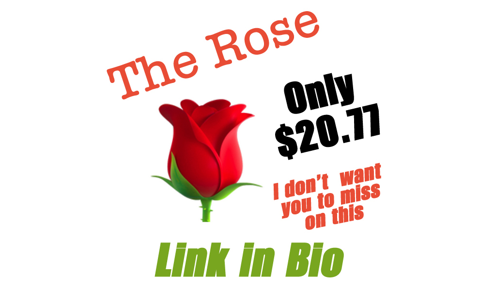 The Rose Only $20.77 Shipped on Amazon (Regularly $41.55)