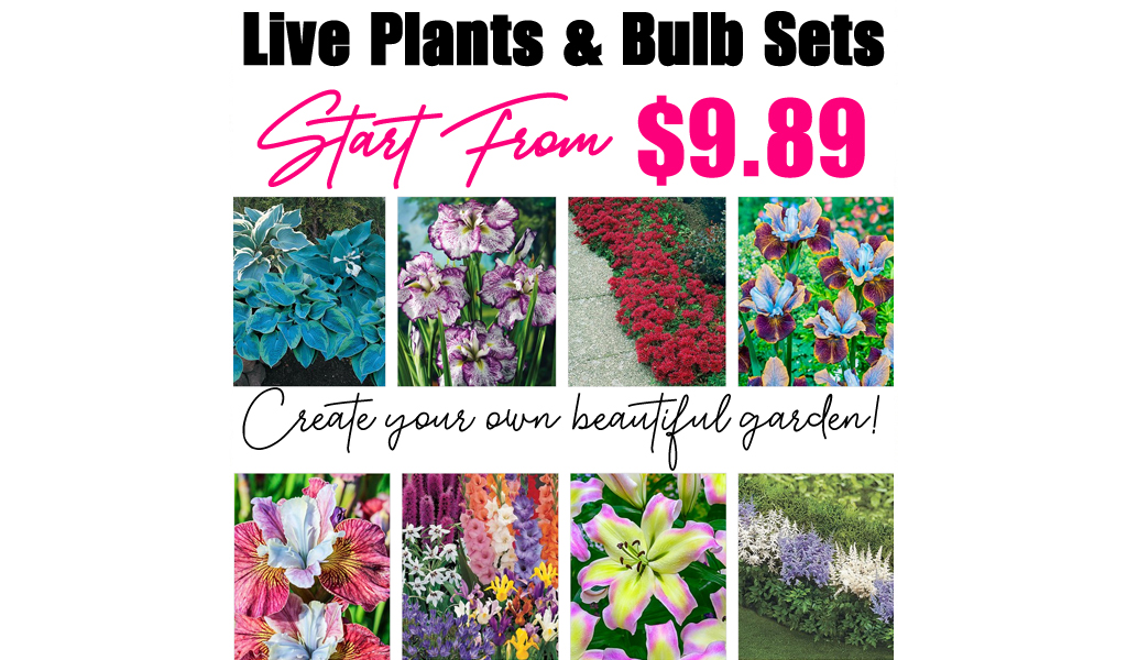 Live Plants & Bulb Sets from $9.89 on Zulily