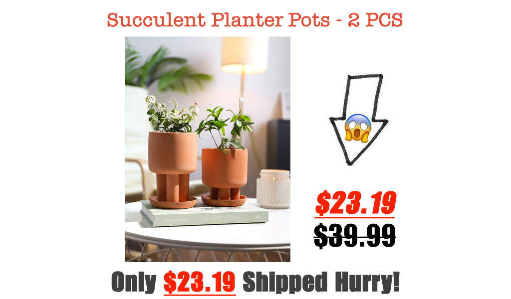 Succulent Planter Pots - 2 PCS Only $23.19 Shipped on Amazon (Regularly $39.99)
