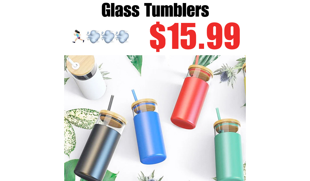 Highly Rated Glass Tumblers Just $15.99 Shipped for Amazon