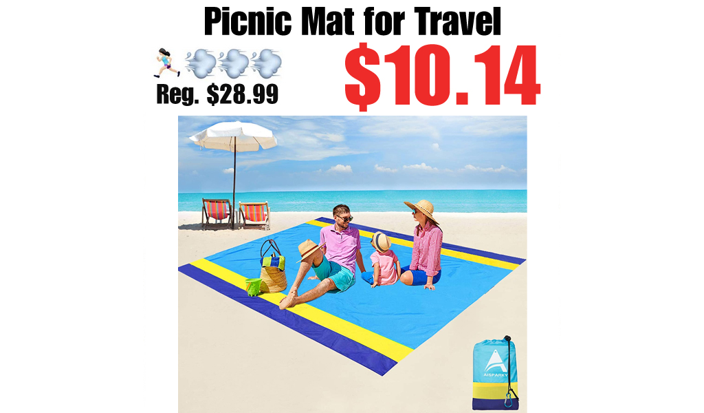 Picnic Mat for Travel Only $10.14 Shipped on Amazon (Regularly $28.99)