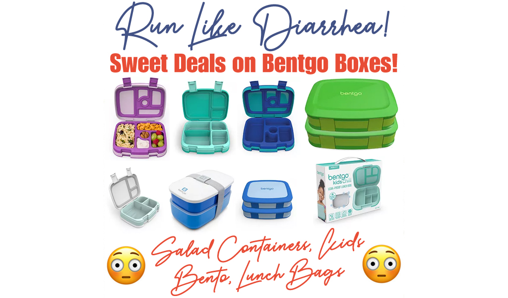 Bentgo Lunch Boxes Sale at Kohl's