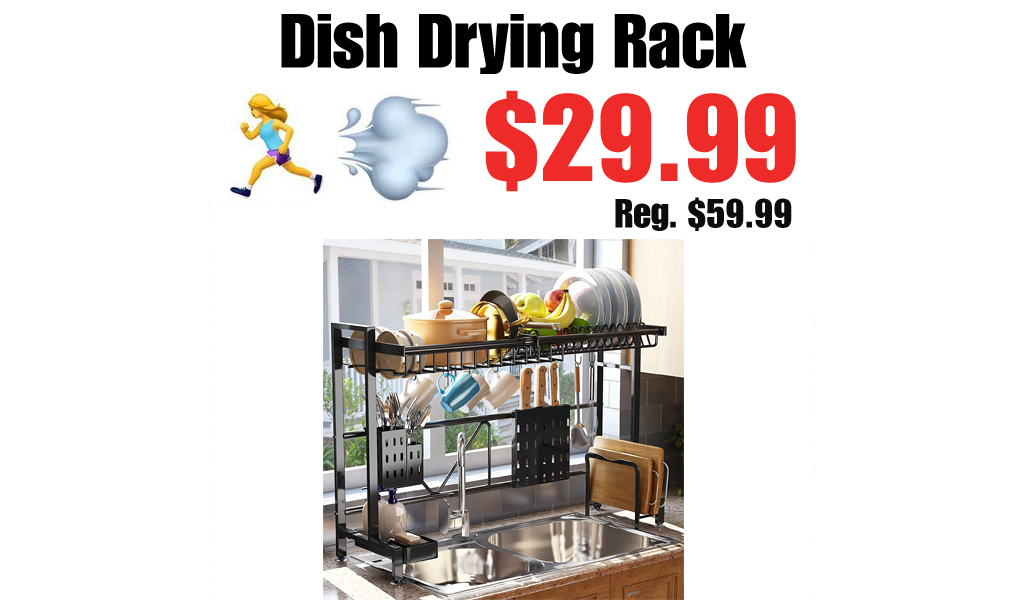 Dish Drying Rack Only $29.99 Shipped on Amazon (Regularly $59.99)