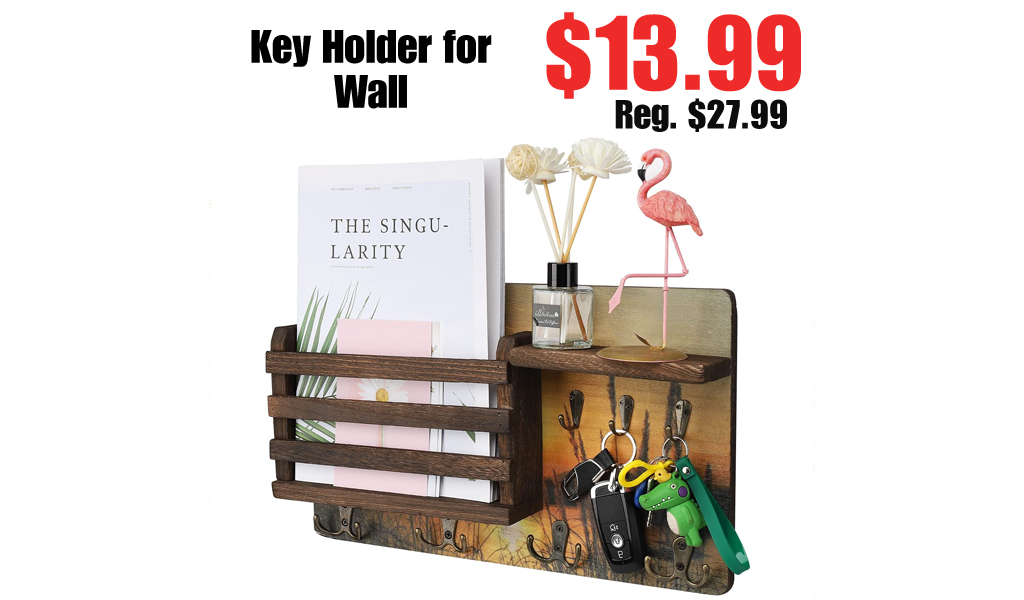 Key Holder for Wall Only $13.99 Shipped on Amazon (Regularly $27.99)