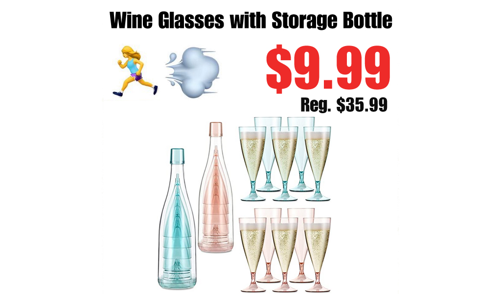 Wine Glasses with Storage Bottle Only $9.99 Shipped on Amazon (Regularly $35.99)