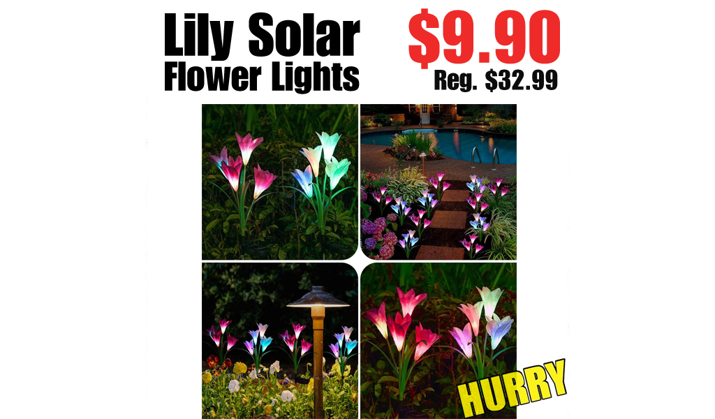 Lily Solar Flower Lights Only $9.90 Shipped on Amazon (Regularly $32.99)