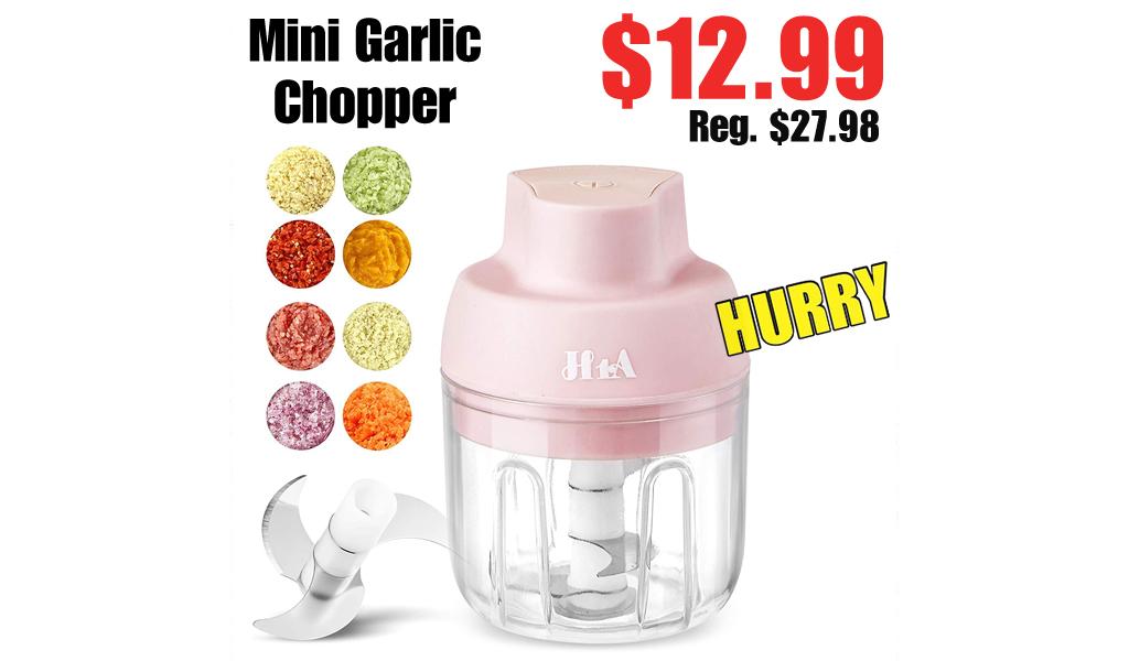 Mini Garlic Chopper Only $12.99 Shipped on Amazon (Regularly $27.98)