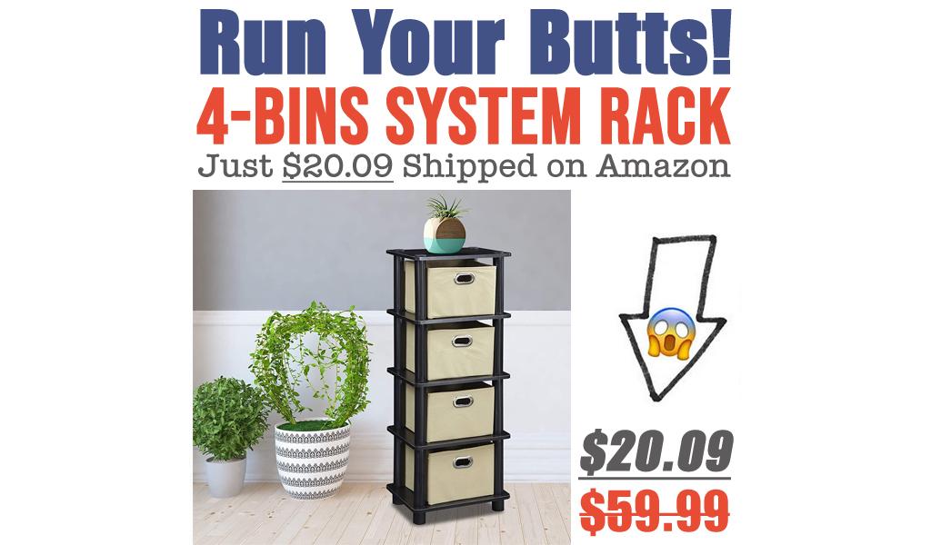 4-Bins System Rack Just $20.09 Shipped on Amazon (Regularly $59.99)