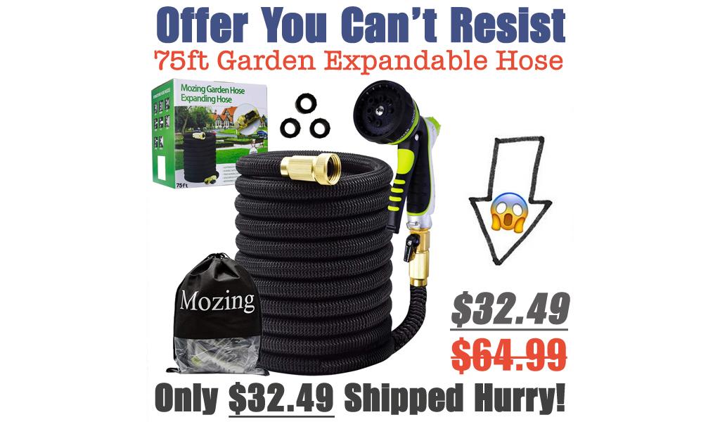 75ft Garden Expandable Hose Just $32.49 Shipped on Amazon (Regularly $64.99)