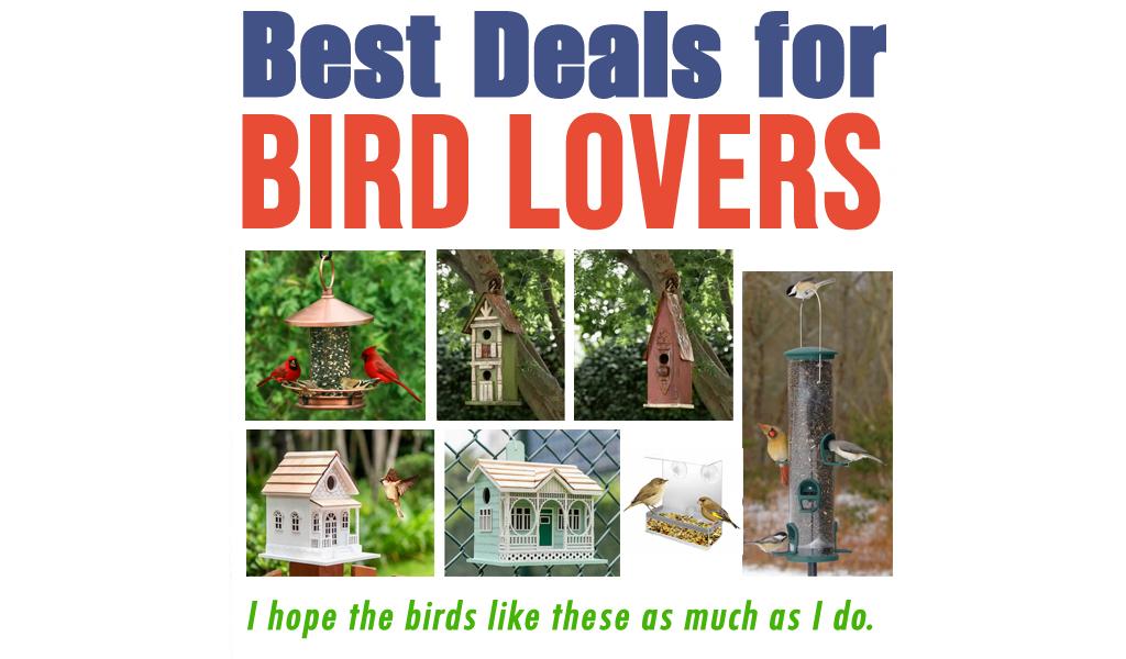 Best Deals for Bird Lovers for Less on Wayfair - Big Sale