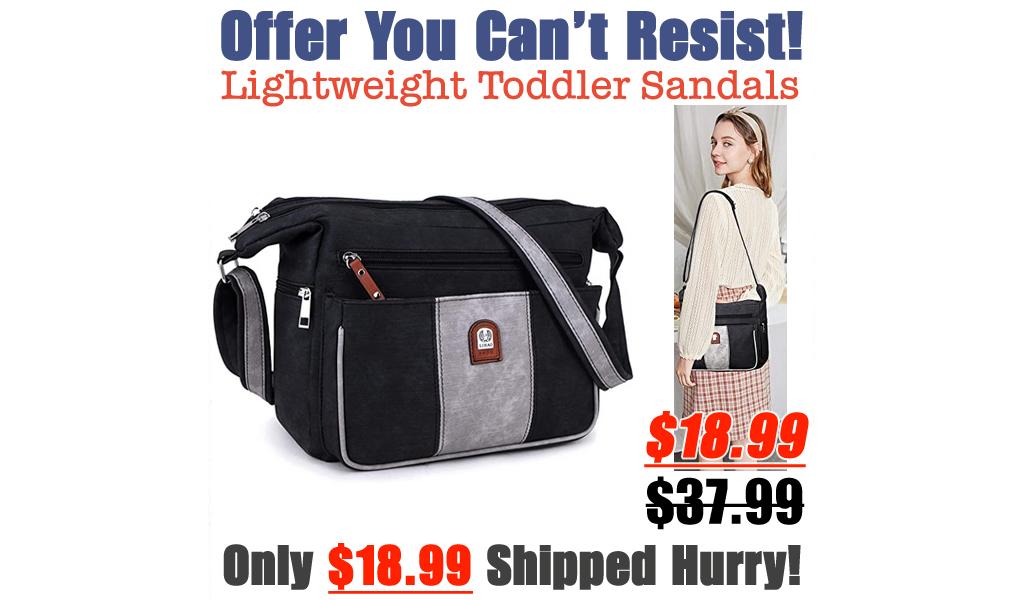 Crossbody Shoulder Bag Only $18.99 Shipped on Amazon (Regularly $37.99)