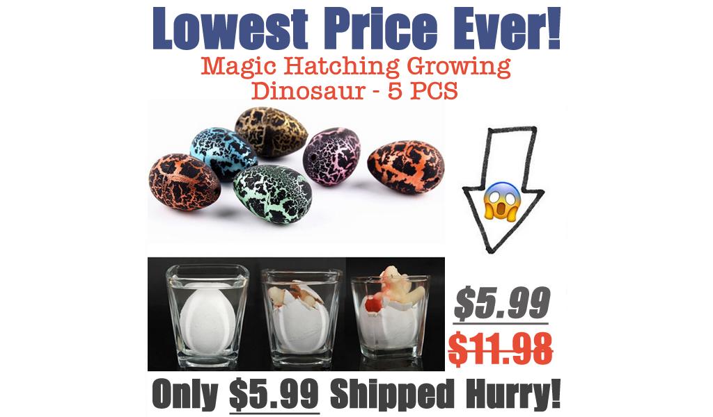 Magic Hatching Growing Dinosaur - 5 PCS Only $5.99 Shipped on Walmart.com (Regularly $11.98)